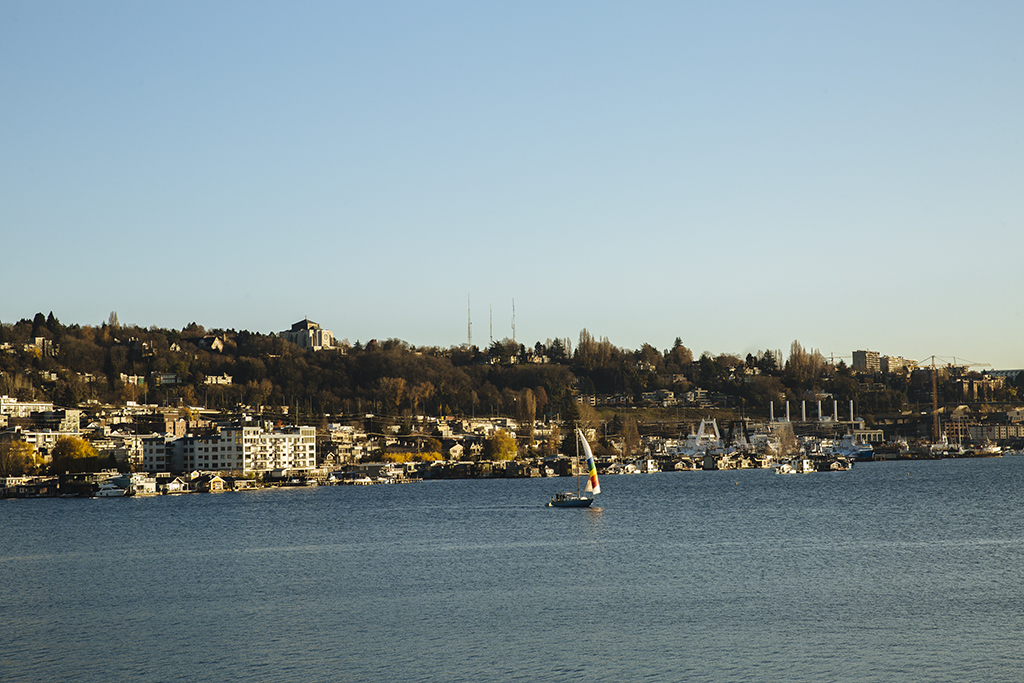 A view of the shore of Lake Union with a sailboat on the water
